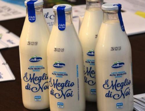"""Graziadei (Latte Trento): """"Crollati i consumi di latte fresco"""""""