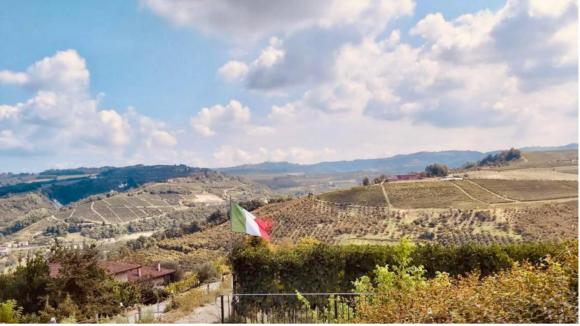 Vendemmia Piemontev