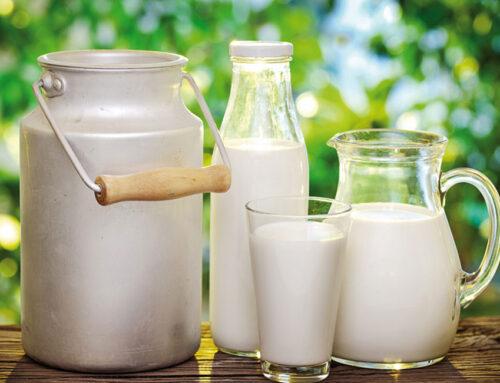 Assocaseari, il punto settimanale sul mercato: leggere crescita per il latte nazionale. Venerdì il burro ha ripreso a salire