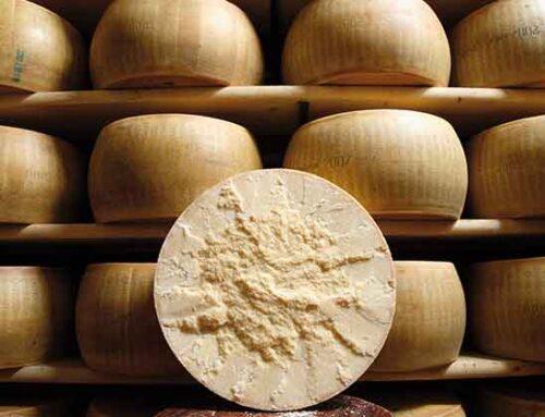 Parmigiano Reggiano, l'assemblea approva il bilancio consuntivo 2020 e ratifica il nuovo Cda