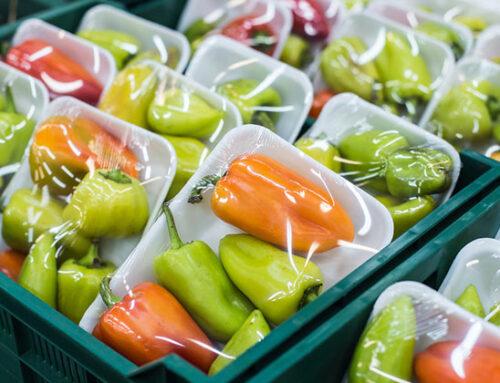 Imballaggi: nuovo allegato tecnico e parziale sospensione per l'etichettatura ambientale