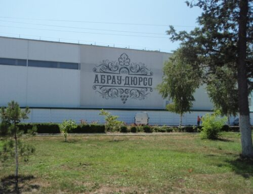 ESTERI  Russia: l'azienda vinicola Abrau-Durso avvia la produzione di olio da semi d'uva