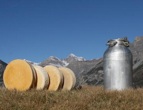 Latteria di Chiuro punta sulla sostenibilità con il Progetto Cheese