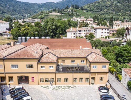 Valdo Spumanti: fatturato a 65 milioni di euro. Si rafforza la presenza in Gdo