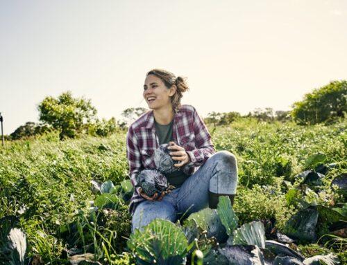Partnership Carrefour Italia-Filiera Agricola Italiana: nel 2021 in arrivo cinque nuove referenze 'firmate Fdai'