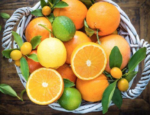 Lemonsoda lancia Lemonsoda Energy Activator