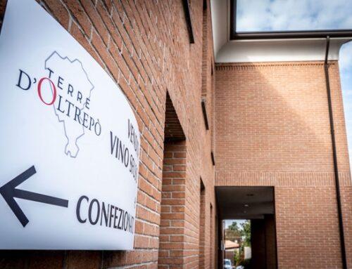 """Indagine per vino adulterato, Terre D'Oltrepò: """"Pronti a procedere con azioni legali"""""""