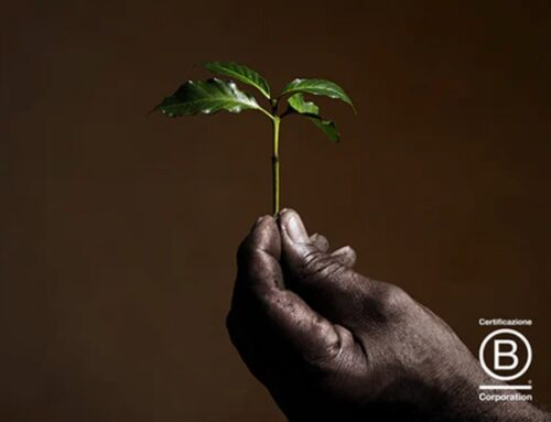 illyCaffè punta su etica e sostenibilità. E diventa B Corp