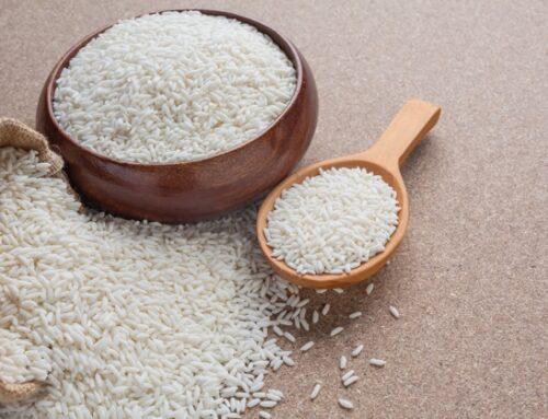 Mipaaf: al via la prima campagna di esportazione di riso italiano in Cina