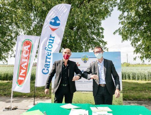 Carrefour e Inalca insieme per la filiera italiana di vitello
