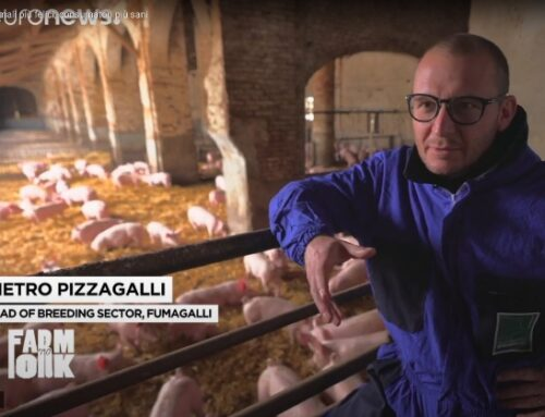 Fumagalli scelta dalla Commissione Ue per raccontare il benessere animale