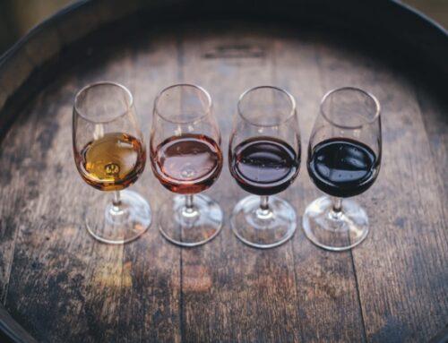 Export in ripresa per il settore vitivinicolo italiano. I dati Ismea