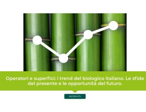 """""""Operatori e superfici: i trend del biologico italiano. Le sfide del presente e le opportunità del futuro"""". Il webinar di B/Open il 24 giugno"""