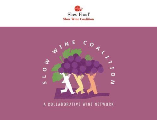 Nasce la Slow Wine Coalition. Il primo appuntamento a Bologna, nel 2022, in occasione della Slow Wine Fair