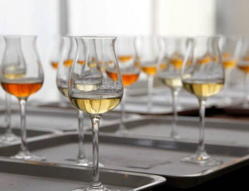 Premio Alambicco d'Oro: 83 medaglie assegnate a grappe, acquaviti e brandy d'Italia
