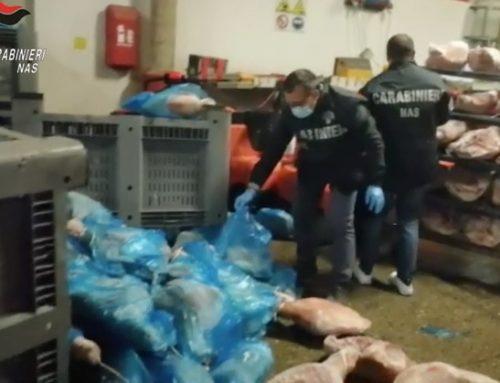 Modena: i Nas sequestrano oltre 20 tonnellate di cosce suine in cattivo stato di conservazione