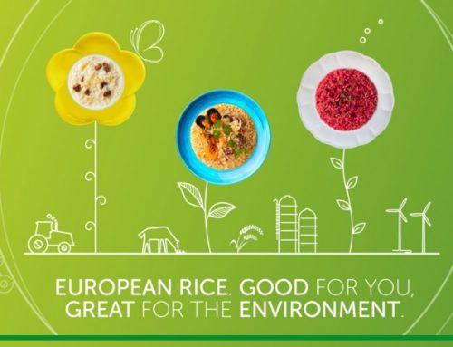Riso Japonica europeo: Italia, Portogallo e Francia uniti nella promozione a Tuttofood